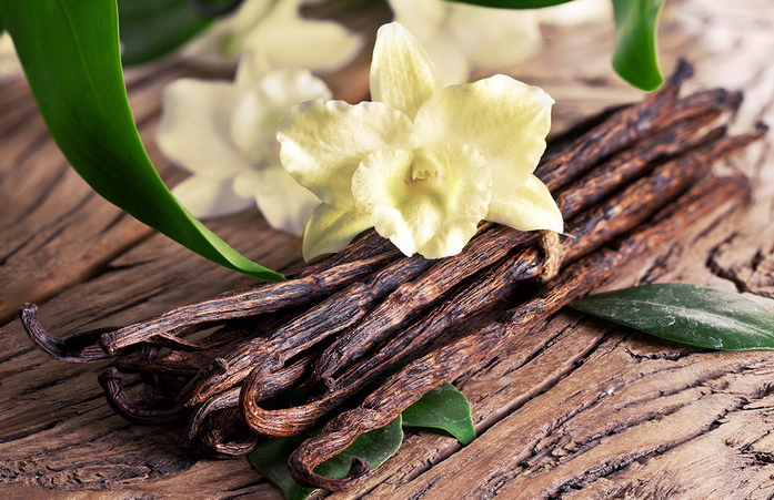 NATURAL VANILLA FLAVOR - MQ International | Flavors & Foods