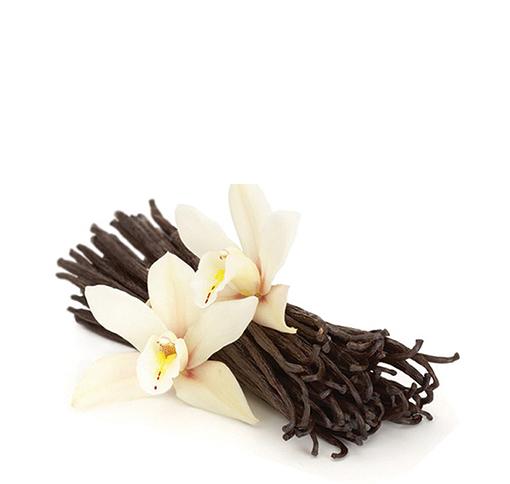 Bột vanilla - ca cao