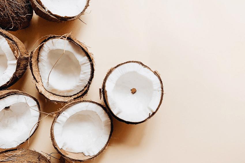 Bột hương dừa sẽ thay thế bột lúa mì trong năm 2020