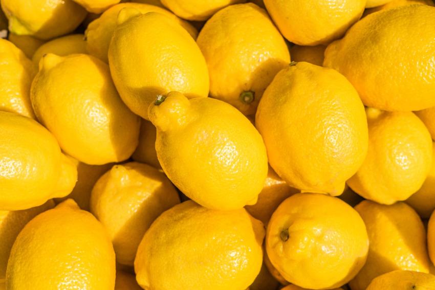Các dòng đồ uống thuần chay được làm chủ yếu từ trái cây và rau củ quả với hàm lượng dưỡng chất cao