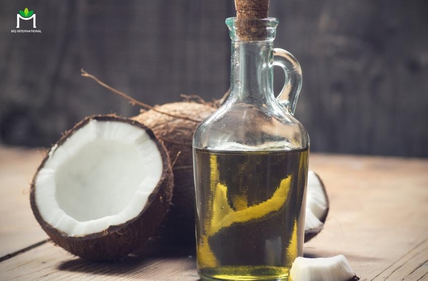 Lượng Acid Lauric dồi dào trong dầu dừa sẽ là câu trả lời cho bài toán y tế hiện tại?