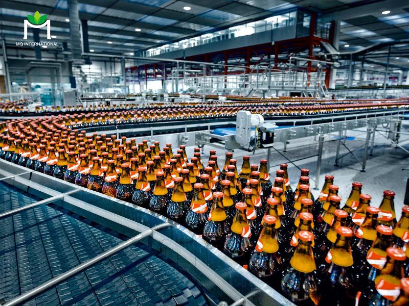 Quy trình sản xuất đúng chuẩn, an toàn và hợp vệ sinh đóng vai trò quan trọng trong việc kéo dài hạn sử dụng của thực phẩm