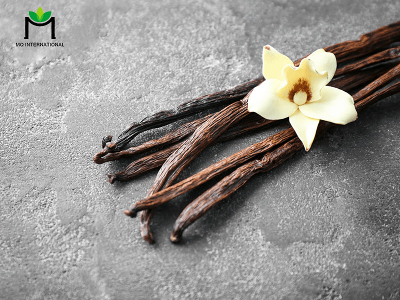 Vani đã được chuyển từ chiết xuất thông thường sang dạng bột để dễ bảo quản hơn