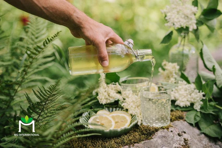 Hương hoa hay thảo mộc cũng dần được đưa vào công thức sản phẩm hard seltzer