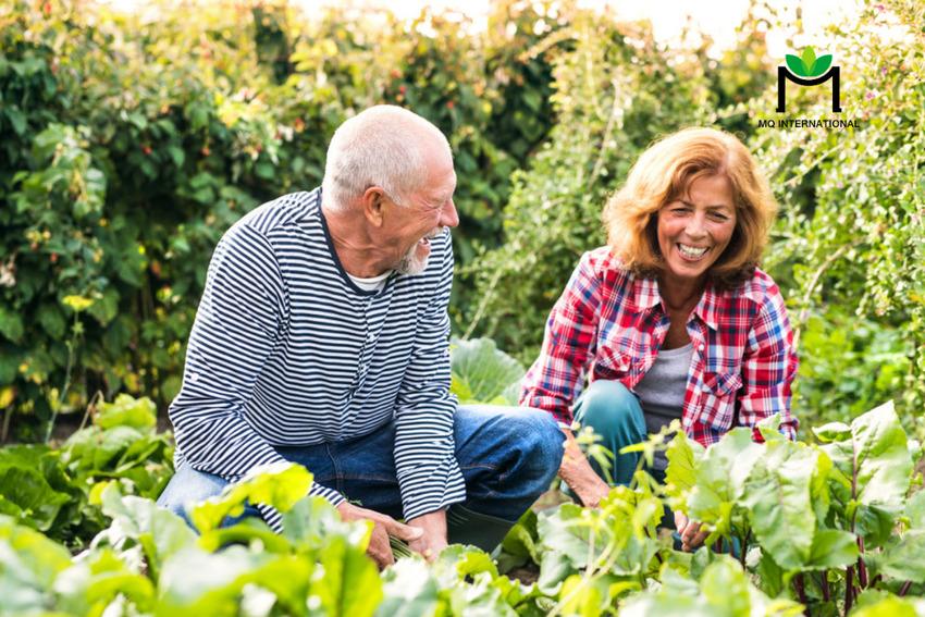 Người tiêu dùng Mỹ ngày càng quan tâm đến thực phẩm tốt cho sức khỏe