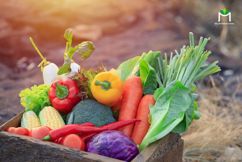 Doanh nghiệp cần nhấn mạnh vào các yếu tố sản xuất nông nghiệp bền vững khi giới thiệu sản phẩm cho thế hệ Z