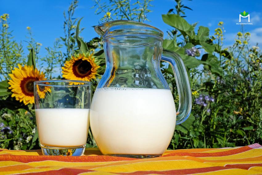 Hoạt động xuất nhập khẩu sản phẩm về sữa cũng tăng cao ở Mỹ trong năm 2020
