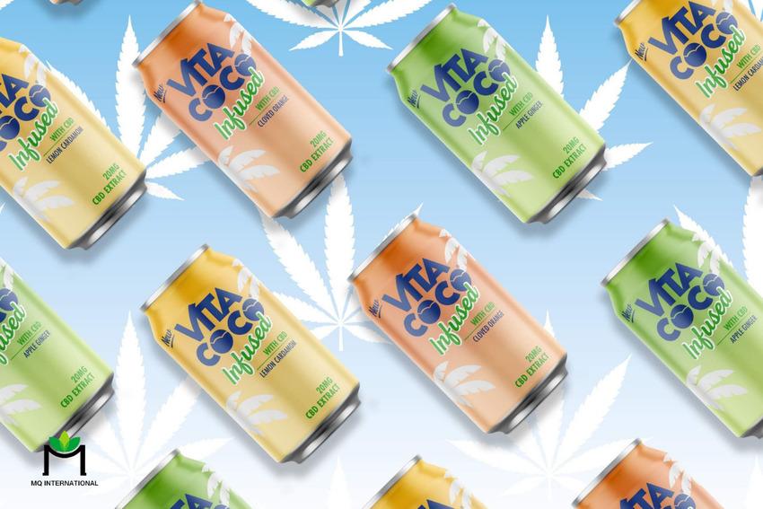 Nhiều thương hiệu đã nhanh chóng bắt kịp xu hướng sử dụng hương dừa cho đồ uống