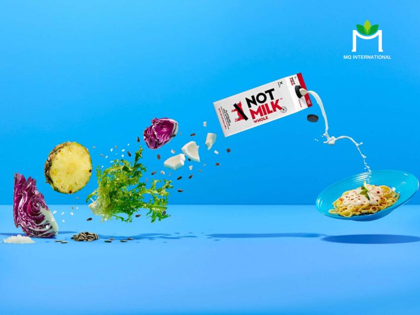 Công thức sữa NotMilk gồm protein đậu, nước ép bắp cải, nước ép dứa cô đặc và rễ rau diếp xoăn