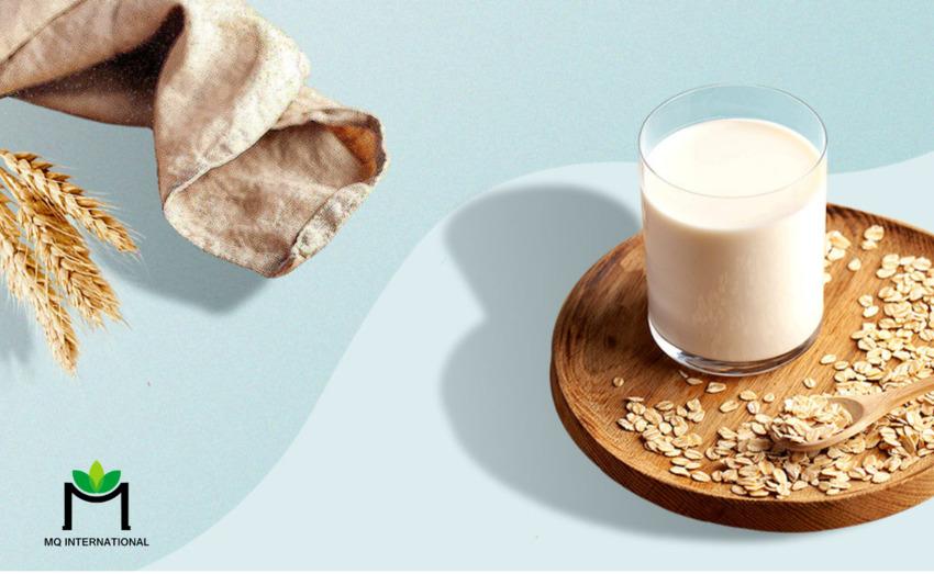 Sữa thực vật được cho là có lợi cho sức khỏe hơn sữa động vật