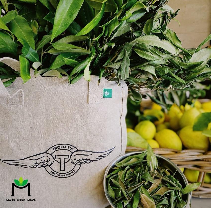 Lemon myrtle dự kiến sẽ là hương vị bùng nổ trong năm 2021