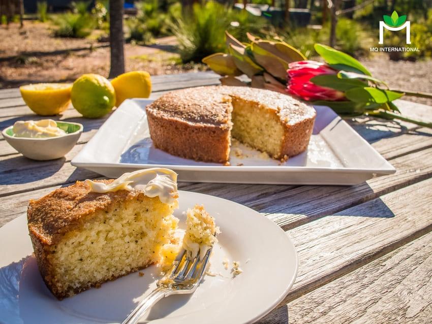 Lemon myrtle được sử dụng trong món ăn để tăng cường mùi vị và cung cấp dinh dưỡng
