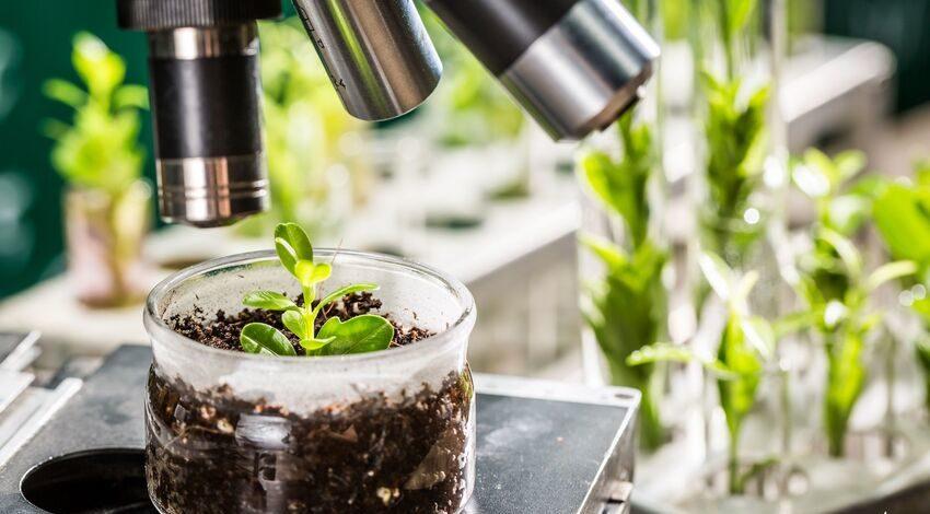 Công nghệ thực phẩm sinh học mang lại hiệu quả cao hơn và bền vững hơn